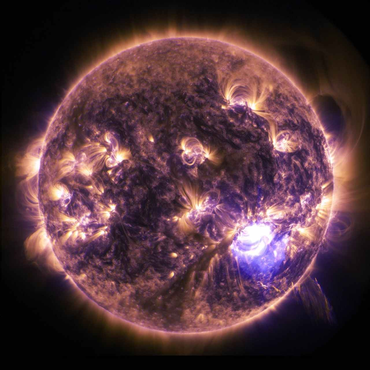 Nakshatra Astrology and Predictions: Article79