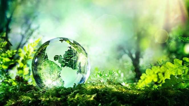 green_world